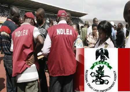 NDLEA arrests youths with drugs in Abuja, Kano Airports